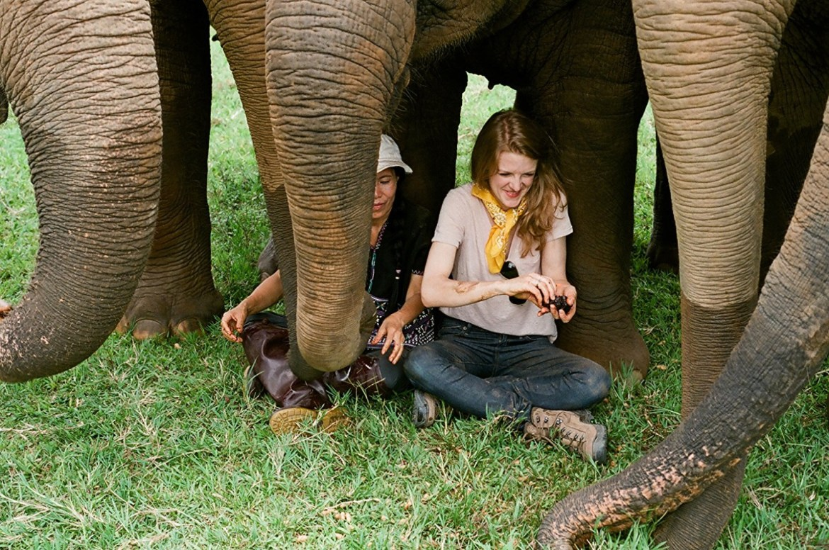 Ashley Bell and Lek Chailert among elephants in Love & Bananas.