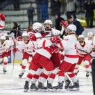 Micah Zandee-Hart's goal in double overtime gave Cornell a 3-2 win over Princeton in the ECAC semifinals.