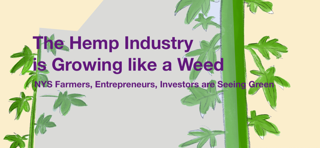 The New York State Hemp Industry is Growing like a Weed | The