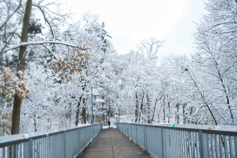Snow blankets the trees surrounding the footbridge from Collegetown to the Engineering Quad on Monday. (Nandita Mohan/Sun Staff Photographer)