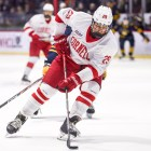 Cornell dominated in the second period to snag a win over the Wildcats on Saturday.
