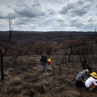 The remains of a bush fire in Bell, New South Wales, Australia on Jan. 28, 2020. (Matthew Abbott/The New York Times)
