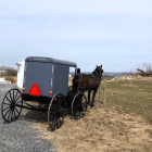 DINING.horse_buggy