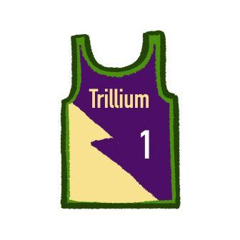 1_trillium