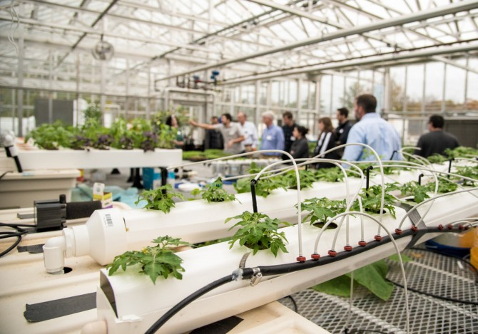 The Cornell University Agricultural Experiment Station adjusts to COVID-19.