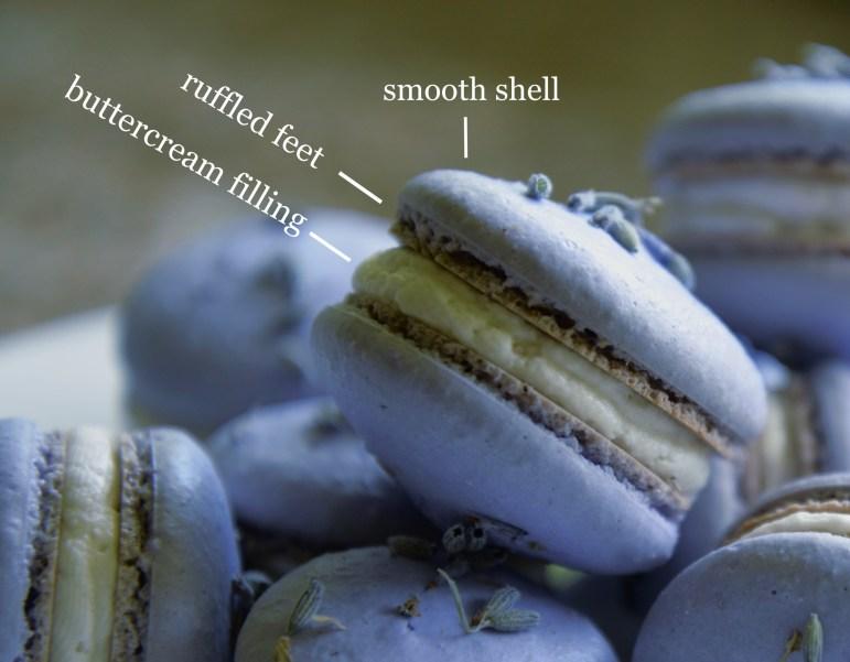 "Macaron ""feet"" explained. (Amelia Clute / Sun Staff Writer)"