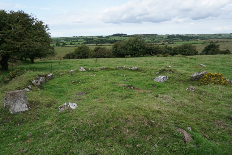 Harpur Downs hut circle