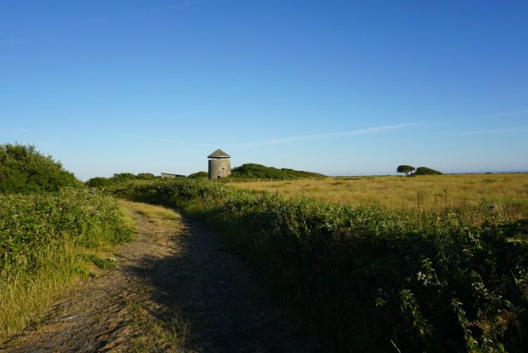 Windmill Farm Reserve Lizard Cornwall