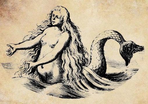 A pretty mermaid