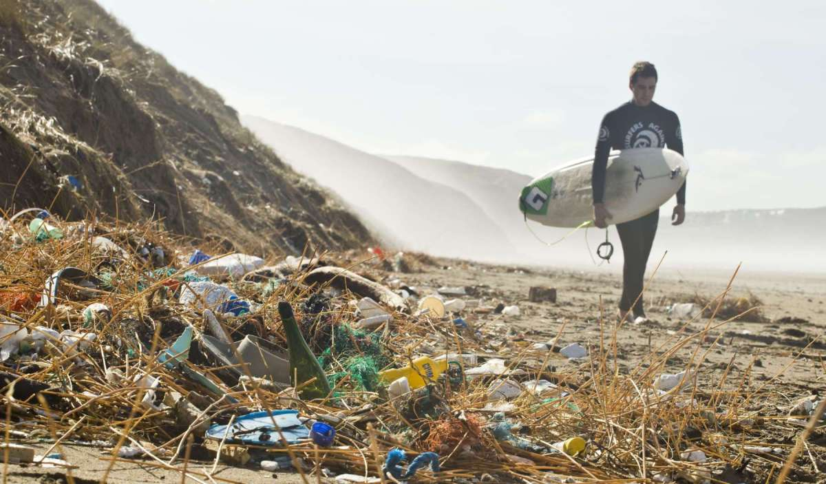 SAS & Steve Double host Plastic-free Coastlines reception in Parliament