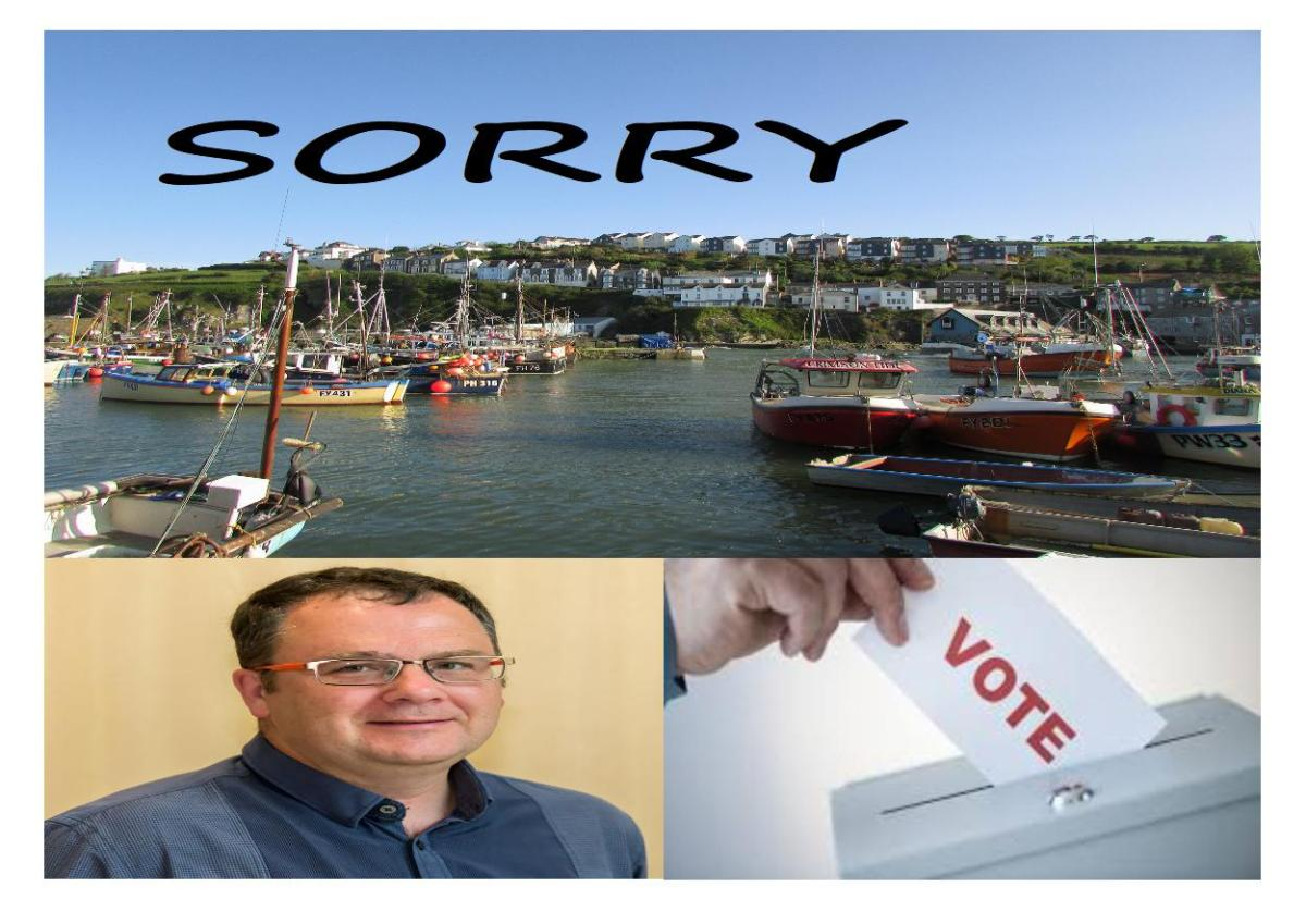 Council apologises to Mevagissey over referendum blunder