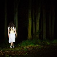 Witchalls' Weekend Review : Wild Works return home with 'magical' Wolf's Child