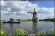 Kinderdijk6