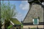 Kinderdijk8