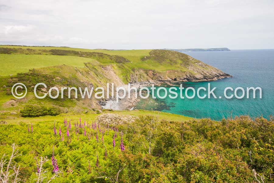 Small Rocky Cove With South West Coast Path In Distance