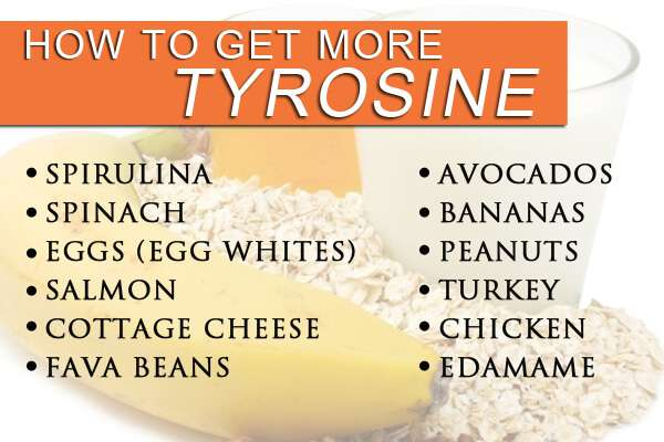 List of foods that are rich in tyrosine, keeping your dopamine naturally high.