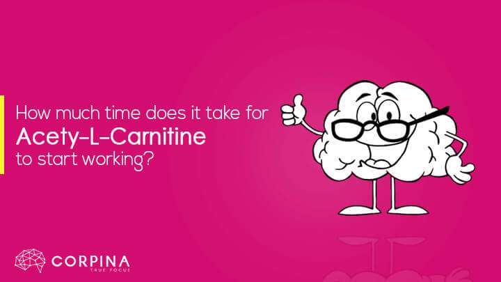 how long does it take for acetyl l carnitine to work
