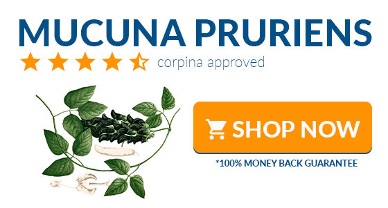 where to buy mucuna pruriens online