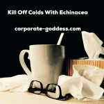 Kill Off Colds With Echinacea