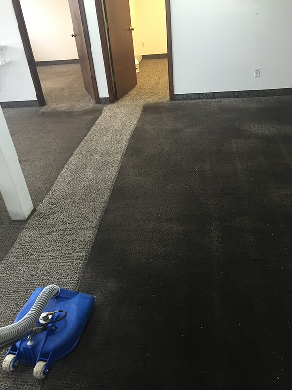 Deep carpet cleaning before and after