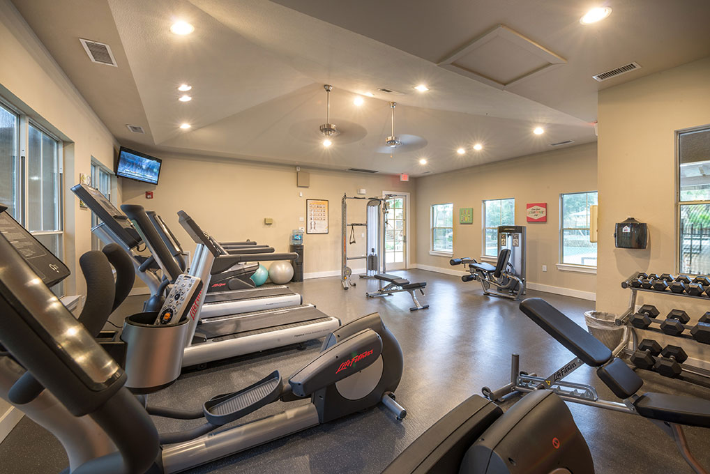 Palomar Apartments Webster Clear Lake Houston