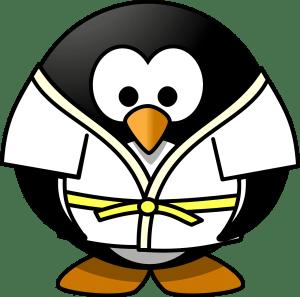 Enfants et arts martiaux ou sport de combat
