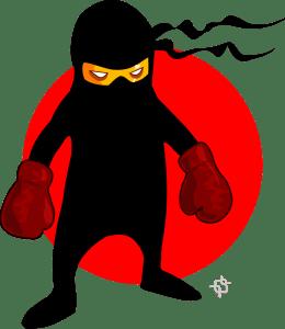 Ninja devant un drapeau japonais