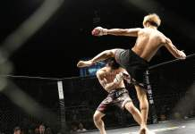 Combat de MMA