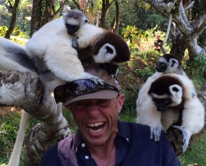 Curly - lemurs on head