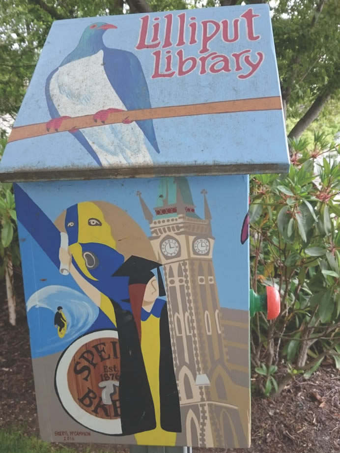 Lilliput Libraries-3