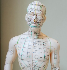 Acupuncture points on model