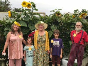 McMullan family Sunflower Judging Day