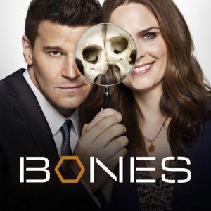Bones, series poster