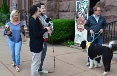 Blessing animals Sunday – October 7