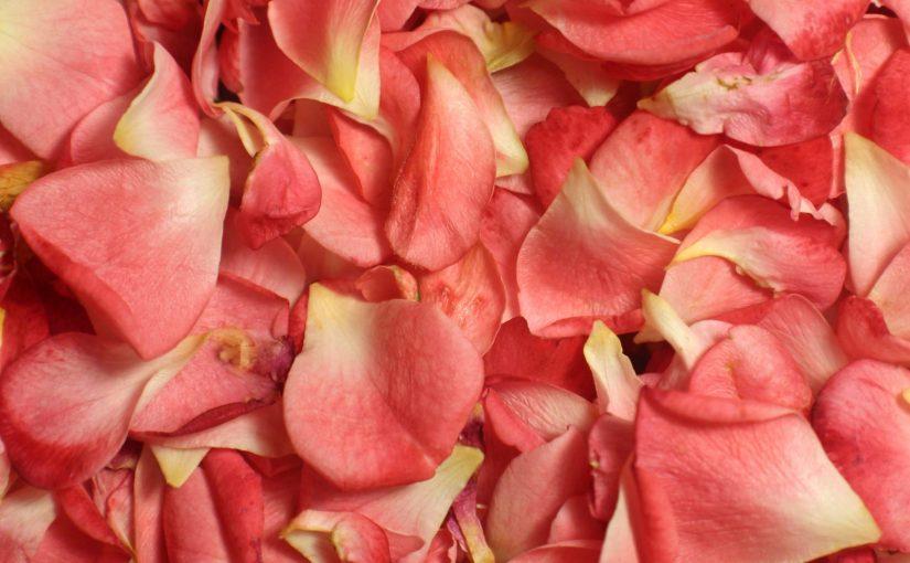 tónico de rosas