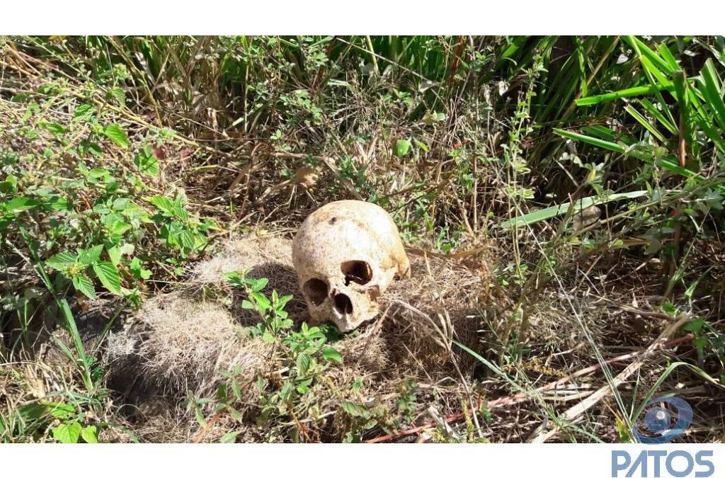 Casal encontra crânio humano no quintal de chácara