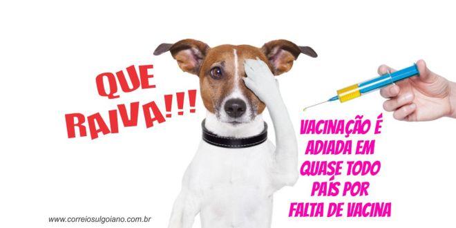 RAIVA ANIMAL: Ministério da Saúde não envia vacinas para Goiás e animais não serão vacinados em 2015