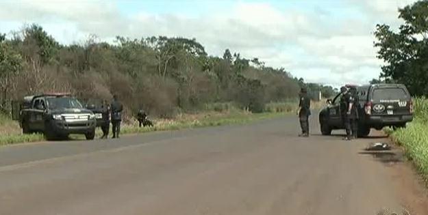 """Comando de Operações de Divisas – COD recebe reforço """"animal"""" para fiscalização das rodovias"""