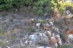 trail recorrido-15