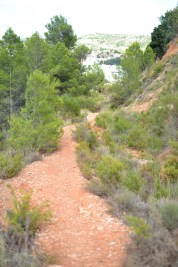 trail recorrido-6