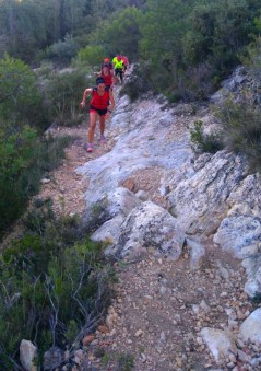 correores entrene sprint-trail 15