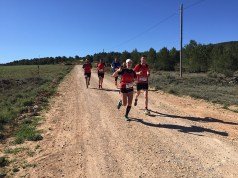 correores trail requena 2016-19