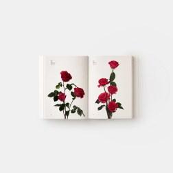 """""""Guia de flores através das cores"""", lançado pela editora Phaidon"""
