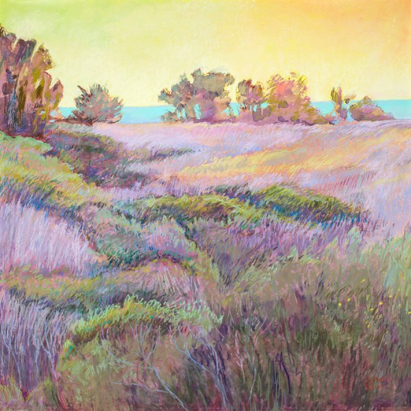 Sarah Carr Contemporary Pastel Landscape Paintings