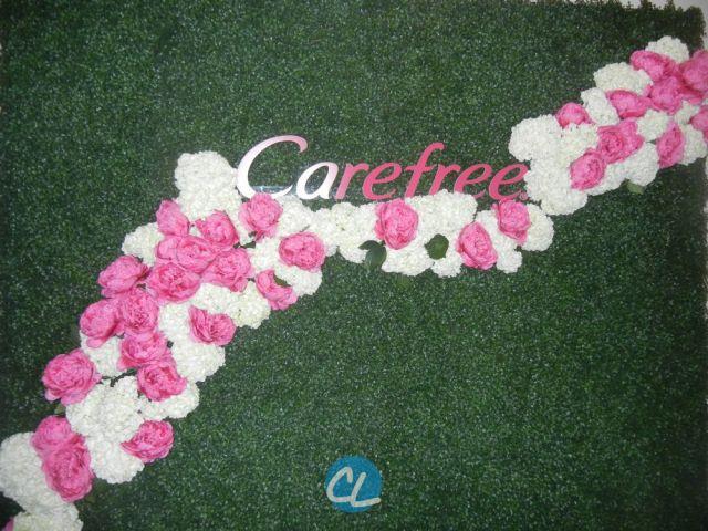 carefree_00002