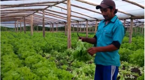 Los pequeños Agricultores de la Ciudad de Corrientes, se unen a la Oración Universal del Papa Francisco por los campesinos