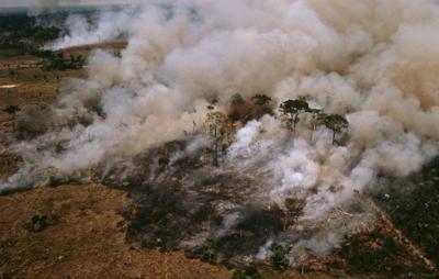 L'Amazzonia brucia, a rischio il 20% dell'ossigeno del Pianeta /Foto