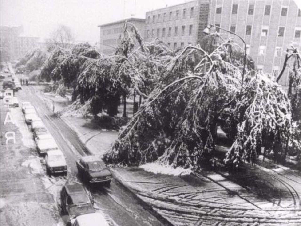 Torino il 27 Ottobre 1979, questa è la nevicata più precoce.