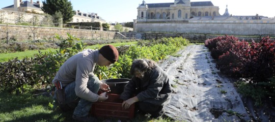 Licenziata da un call center di Torino, Romina ora è giardiniera a Versailles