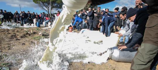 pastori sardi prezzo latte